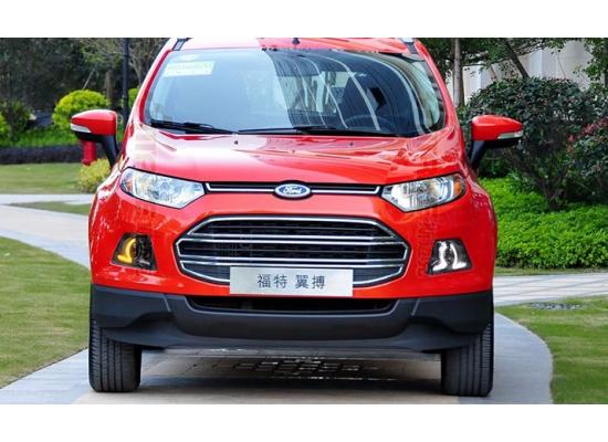ДХО для Ford Ecosport. Вариант 2 (фото)