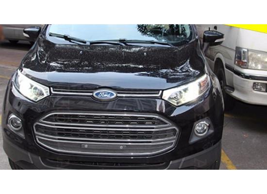 Фары для Ford Ecosport 2014-по н.в. Вариант 2 (фото)