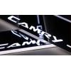 Накладки на пороги LED для Toyota Camry (фото)