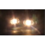 Овальные светодиодные противотуманные фары с ДХО для Honda, 2 полосы