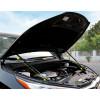 Газовый упор капота для Toyota Highlander 3 2016-н.в.